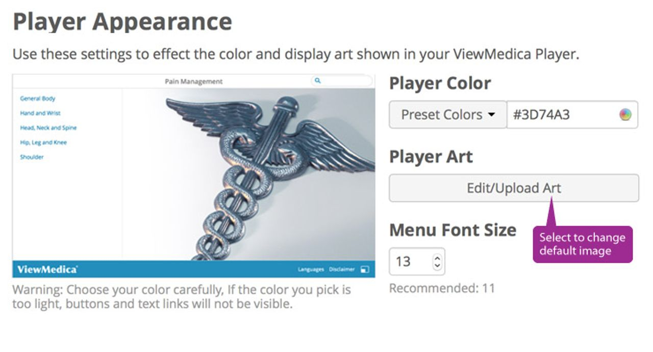 The appearance editor allows you to edit your players color, art, and font size.
