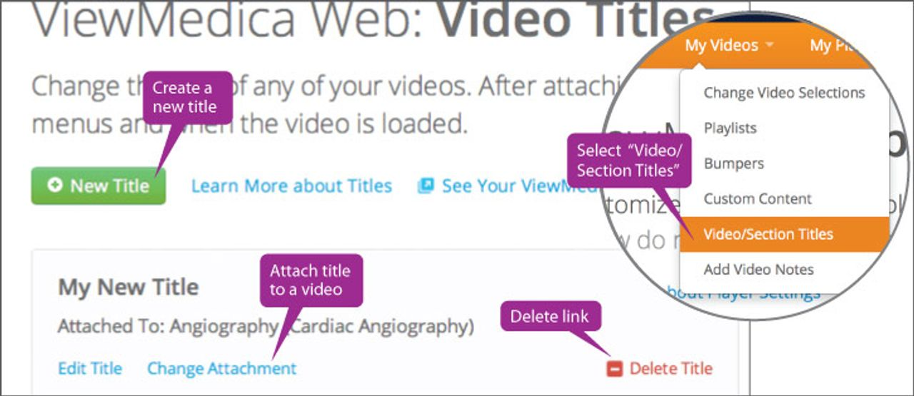 You can change individual video title using the web interface.