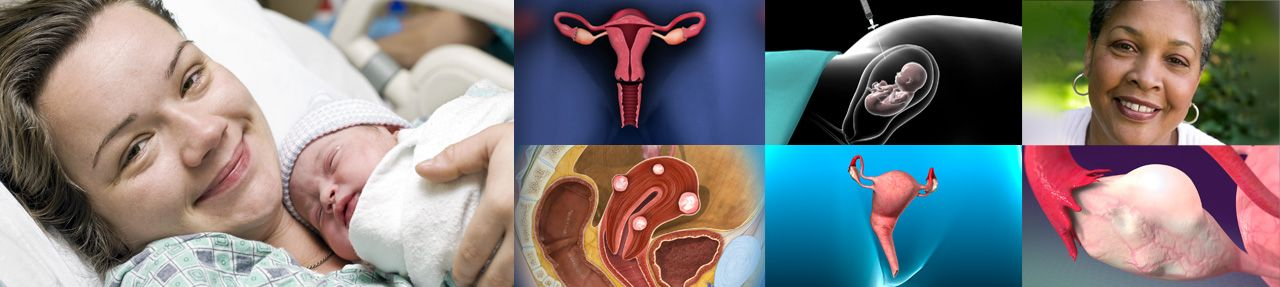Various images from ob/gyn patient education videos